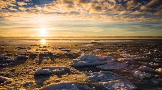 Два из пяти первых резидентов Арктической зоны РФ – из Мурманской области