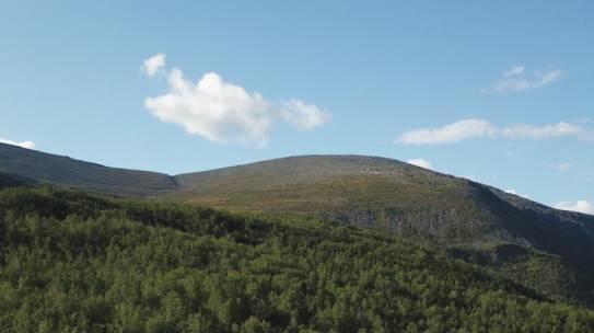 Первый «Гектар Арктики» в Мурманской области поставлен на кадастровый учёт